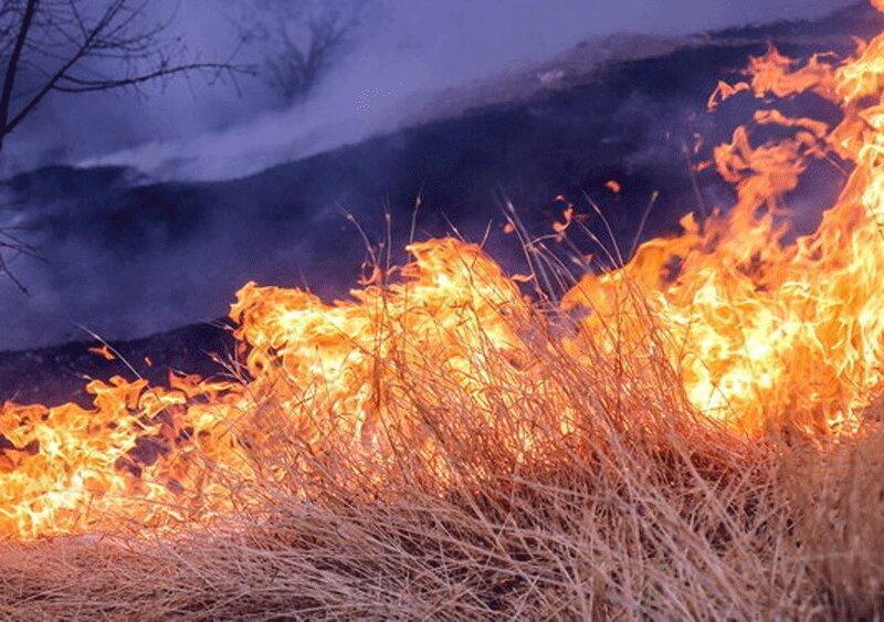 100 هکتار از مراتع و جنگل های شمال دزفول در آتش سوخت